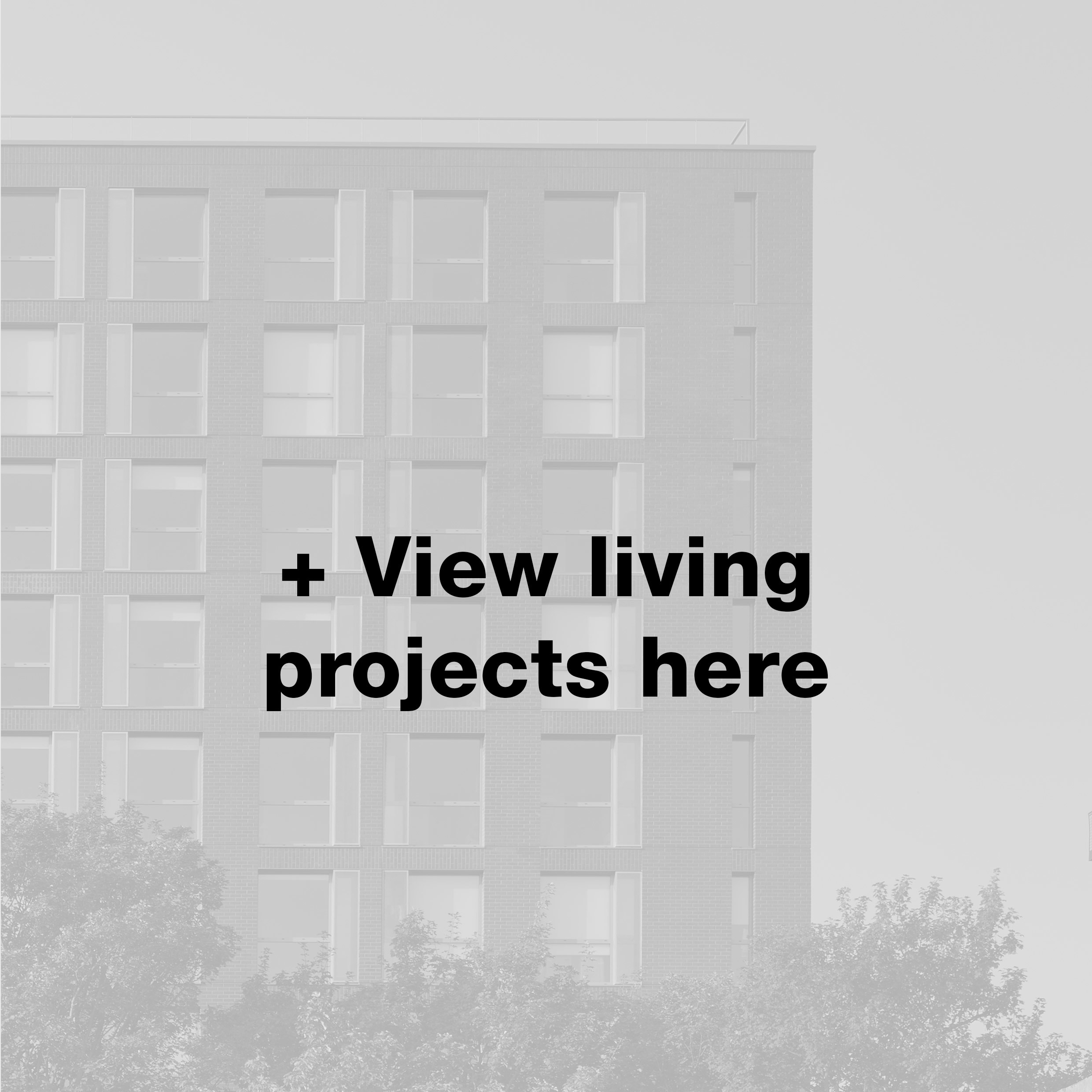 living-projects-here.jpg#asset:10531